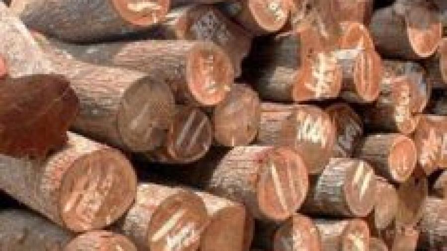 balok-kayu-235x300